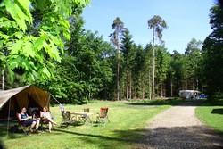 Camping 't Vlintenholt Odoorn