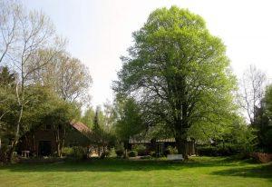 Vakantiehuisje De Hondsrughill Valthe