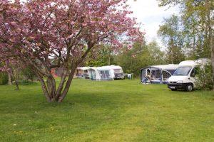 Camping Johanna Hoeve Ryptsjerk