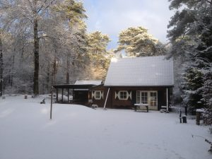 Ontdek nog 11 mooie natuurvakantiehuisjes in Drenthe