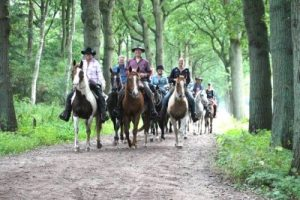 Trail Ranch Nederland