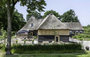De Vijf Suites – Bed and Breakfast Drenthe Elp