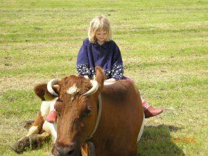 Kaasboerderij de Marlannen Jouswier