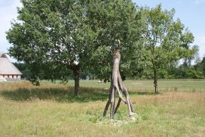 Land Art Workshops Drenthe
