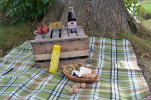 Familieuitje met Picknick op de Fietse in Drenthe