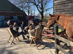 Paardencoaching Groningen (Winsum)
