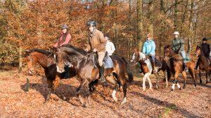 Buitenritten met paard in het mooiste stukje Drenthe