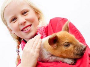De leukste kinderworkshops en kinderfeestjes in Drenthe
