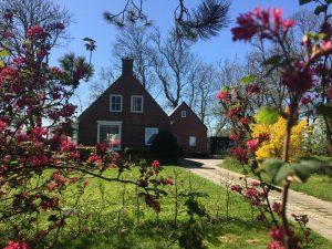 Ontdek nog 11 mooie natuurvakantiehuisjes in Groningen