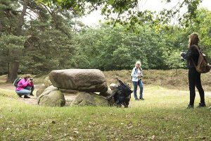 Op Safari met je Camera in Drenthe