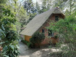 Charmant boshuisje De Kleine Vos Norg