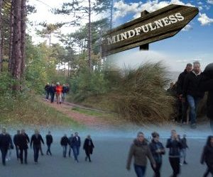 Excursies Vlieland Hostess