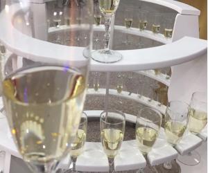 Trouwen met de ChampagneDame